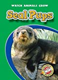 Seal Pups, Colleen Sexton, 1600143938