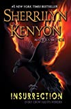 Book cover from Insurrection: Witch of Endor (Nevermore/Witch of Endor Nevermore / Witch of Endor)by Sherrilyn Kenyon
