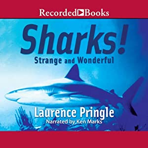 Sharks! Strange and Wonderful Audiobook