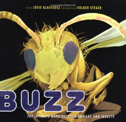 Buzz: The Intimate Bond Between Humans and Insects