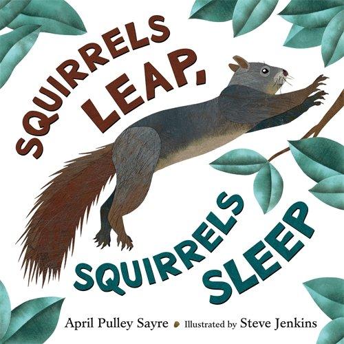 Squirrels Leap, Squirrels Sleep (Squirrels About)