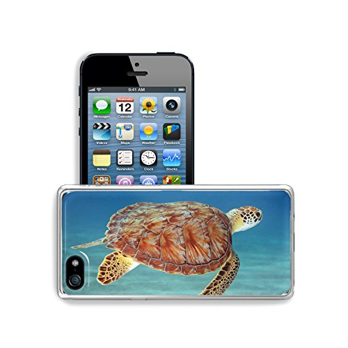 (MSD Apple iPhone 5 Clear case Soft TPU Rubber Silicone Bumper Snap Cases iPhone5/5s IMAGE of sea blue nature ocean animal reef water turtle underwater diving aquatic marine fish tropical green)
