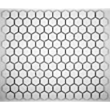 Hexagon White Porcelain Mosaic Tile Matte Look 1x1 Inch