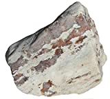 Cut That Agate - 200 Pound Large Natural Polished Boulder - Red Agate in Silicated Limestone