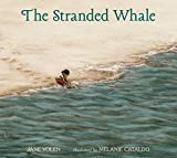 : The Stranded Whale