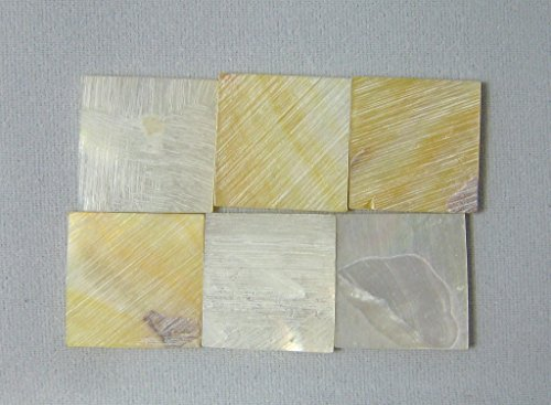 150 Pieces 1.5cm(0.59'') Square Sea White Mother of Pearl MOP Shell. One Side Polished. For Mosaic Art Tiles, Musical Instrument Inlay. by Unknown (Image #3)