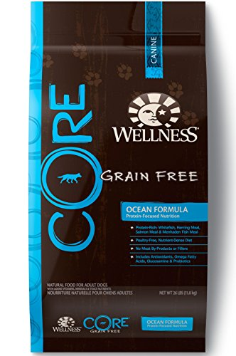 Wellness CORE Natural Grain Free Dry Dog Food, - Wellness Dog Food Seafood