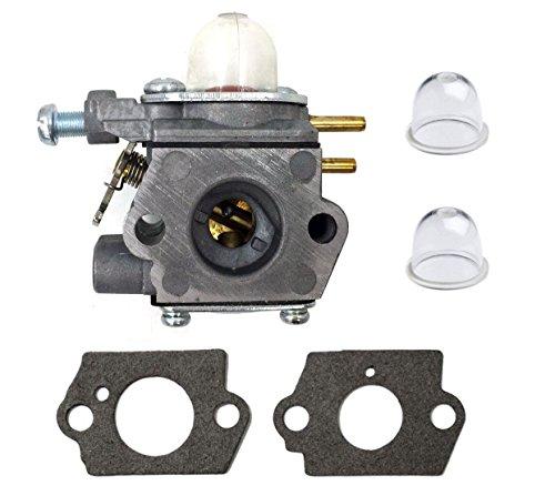 Carburetor for Bolens Bl110 BL160 BL425 - Troy Bilt TB21EC TB22EC TB32EC TB42BC TB80EC RM2510 Carburetor - MTD 753-06190 753-05133 753-04333 791-182875 791-182062 - Walbro WT973 Carburetor (TB32EC)