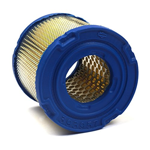 Briggs & Stratton 393957S Round Air Filter Cartridge (Stratton Air Cleaner)