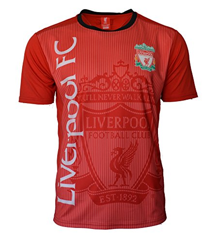 Liverpool Fc Home Shirt - Liverpool Soccer Jersey Adult Training Custom Name and Number (XL, NO Name -RED H01)