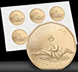 2012 $1 Lucky Loonie CIRCULATION PACK of 5 Canada Canadian One Dollar Five coin