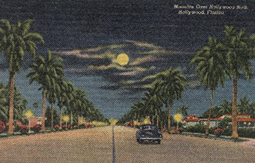 Hollywood, Florida - Moonlight View over Hollywood Blvd. - Vintage Poster (16x24 SIGNED Print Master Giclee Print w/ Certificate of Authenticity - Wall Decor Travel - Hollywood Of Map Blvd