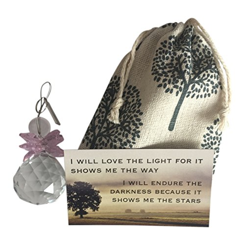Thinking of You ~ Glass Sun Catcher with pink wings in Gift Bag ~ Encouraging Magnet