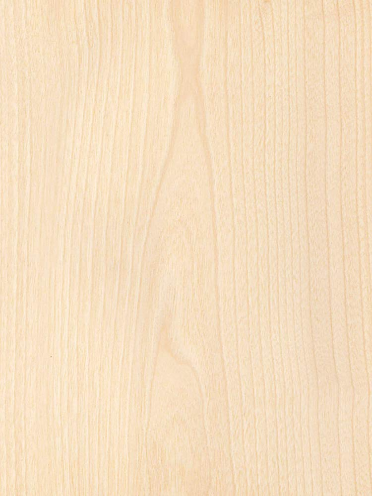 Wood Veneer, Birch, White Rotary, 2 x 8, 10 mil Paper Backer by Veneer Tech