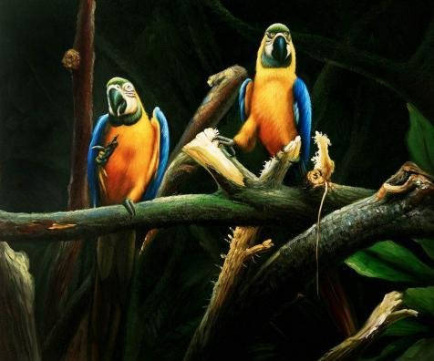 'Parrots' Oil Painting, 10x12 Inch / 25x31 Cm ,printed On High Quality Polyster Canvas ,this High Quality Art Decorative Canvas Prints Is Perfectly Suitalbe For Living Room Decor And Home Artwork And Gifts