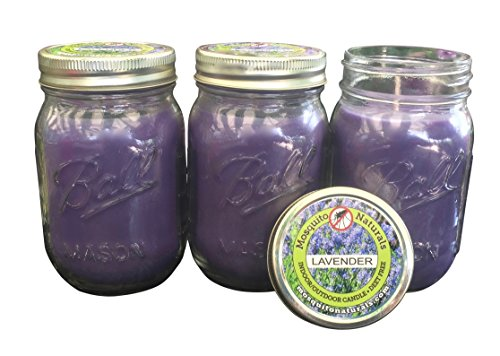 Mosquito Naturals Natural Lavender Mosquito Repellent Candle (Set of 3) Indoor/Outdoor -88 Hour Burn- Naturally Repels Insects with Essential Oils, Citronella Soy, Ball Mason Jar, Made in USA, from
