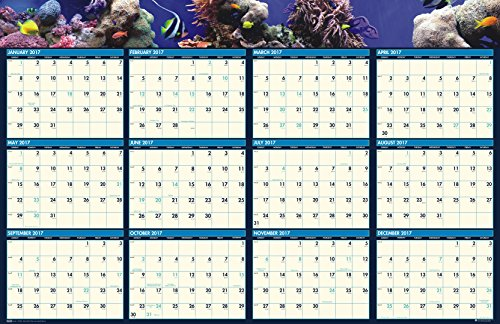 "House of Doolittle 2017 Laminated Wall Calendar, Earthscapes Sea Life, Reversible, 24 x 37"" (HOD3969-17)"