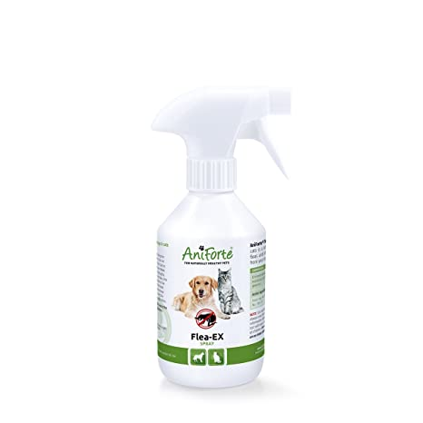 AniForte EX - Spray contra pulgas (250 ml), 100% Puro y