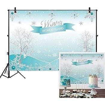 c34af20175da Allenjoy 7x5ft Winter Wonderland Theme Backdrop for Girl Sweet 16 Sixteen  1st Birthday Party Banner Festival Ice Blue Background Children Family  Photo Shoot