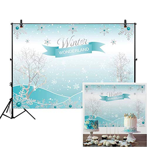 Allenjoy 7x5ft Winter Wonderland Theme Backdrop for Girl Sweet 16 Sixteen 1st Birthday Party Banner Festival Ice Blue Background Children Family Photo Shoot]()
