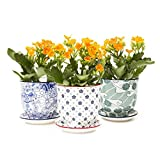Chive - Liberte, Succulent and Cactus Planter Pot with Drainage Hole and Saucer, Small Porcelain Pot - Bulk 3 Pack Tray and Dish