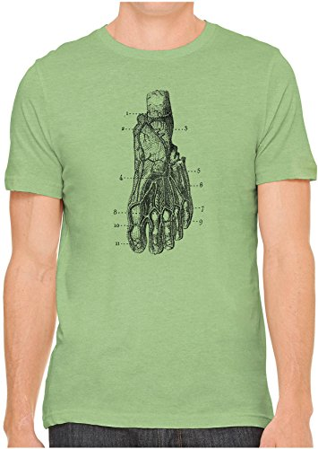 Unisex Mens Historical Anatomy Foot Diagram Hand Screen Printed Fitted Cotton T Shirt  Leaf Green  2Xl