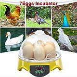 Vistaric Unique Automatic 7 Egg Turning Incubator Chicken Hatcher Temperature Control: AU Plug