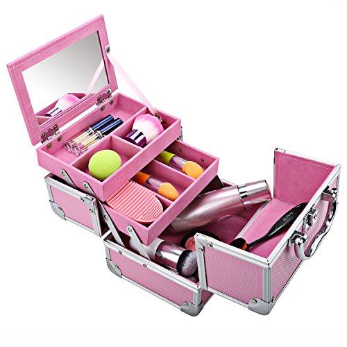 Mini Makeup Train Case,Portable Makeup Organizer, Aluminum Jewelry Cosmetic Box 2 Trays, Mirror and Key Lock (All Pink)