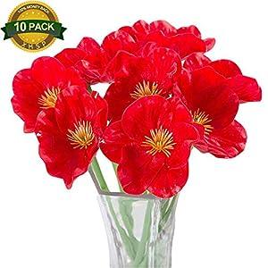 Silk Poppy Flowers