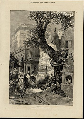 Gnarled Tree - Benares Street India Ox Gnarled Tree Buildings 1876 great old print for display