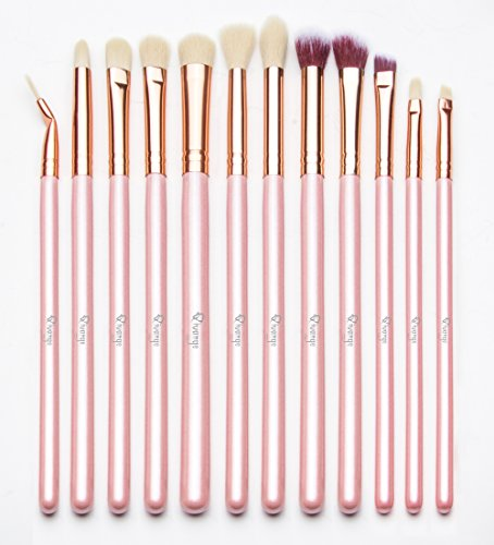 Qivange Eye Makeup Brushes, Eyeshadow Concealer Eyeliner Brushes Set with Portable Pouch (12pcs, Pink with Rose Gold)