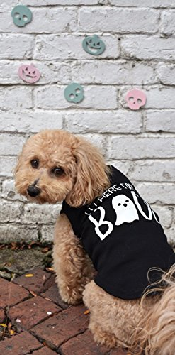I'm Here For The Boos Dog Shirt by Pink Papyrus Co.