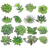 MAXZONE 16 Pack Artificial Succulent Create Realistic Succulent Flocking Plants Unpotted Fake Succulents Plant for Lotus…