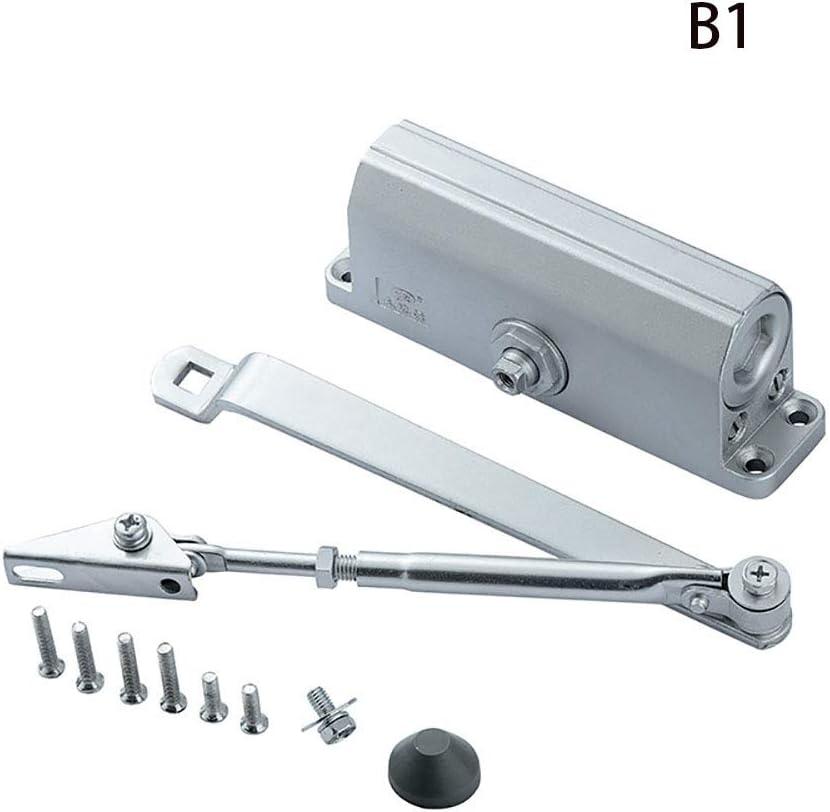 CHUANG TIANG Cierre de Puerta automático, Cierre de Puerta hidráulico Ajustable, aleación de Aluminio, Cierre de Puerta cortafuego hidráulico 45-65KG,B1