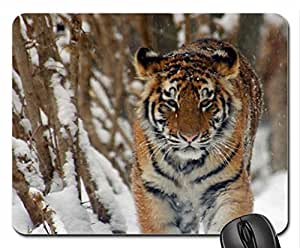 Amur Tiger Cute Cool Decorative Design Animal Cat Mousepad Rainbow Designs