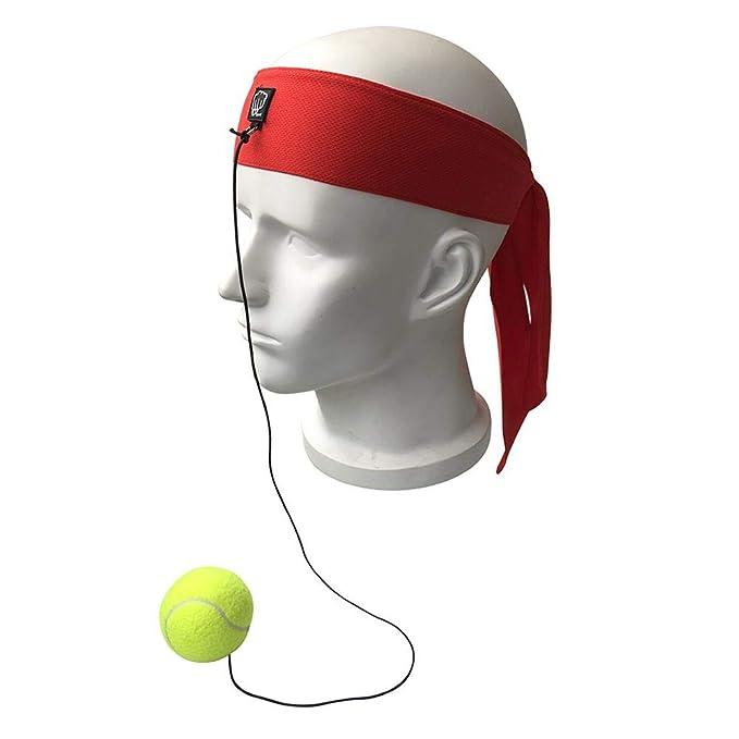 Apointed balón de Entrenamiento para el Boxeo, balón para ...