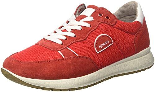 Sneaker IGI 11203 Uomo Alto a Rosso Uad amp;CO Collo trvvOwZFq
