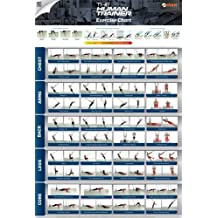 Suspension Gym - The Human Trainer - Poster | Exercise Chart Suspension Gym Workouts