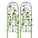 Amagabeli Garden Trellis for Climbing Plants 60' x 18' Rustproof Black Iron Potted Vines Vegetables Flowers Patio Metal Wire Lattices Grid Panels for Ivy Roses Cucumbers Clematis Pots Supports 2 Pack