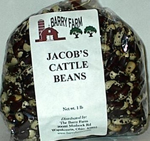 Jacobs Cattle Beans, 1 lb. by Barry Farm