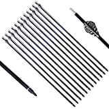 PG1ARCHERY Archery Target Carbon Arrows, 30 inch Practice Arrow 2'' Fletched Vanes with Removable Field Points Tips for Hunting (Pack of 12) White