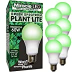 MiracleLED 604617 Stasis Light 6-Pack Green 60W Grow Room