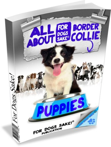 (Border Collie Puppies (The Complete Guide to Border)
