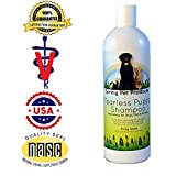 Spring Pet Tearless Puppy Shampoo - 16 Oz ~ Safe and Gentle for Dogs, Cats and Ferrets - Soap-free Aloe Vera Formula - Pleasant Fruity Scent ~ Recommended By Veterinarians