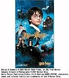 ハリー・ポッターと賢者の石 吹替版 [VHS]