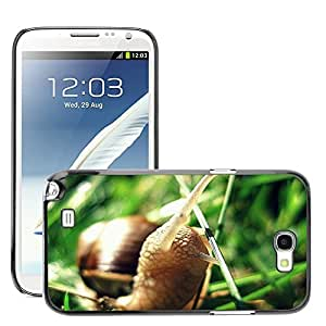 Super Stellar Slim PC Hard Case Cover Skin Armor Shell Protection // M00127197 Snail Green Nature Animal Shell // Samsung Galaxy Note 2 II N7100