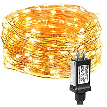 LE String Lights 33ft with 100 LEDs, Waterproof Copper Wire Lights, on