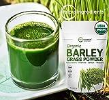 Sustainably US Grown, Organic Barley Grass
