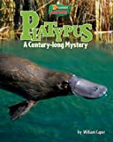 Platypus, William Caper, 1597167355