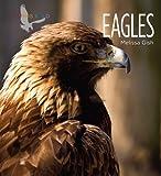 Eagles, Melissa Gish, 1583419683